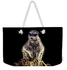 Meerkat Lookout Weekender Tote Bag by Martin Newman