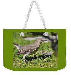 Mockingbird Foraging 1 Weekender Tote Bag by Linda Brody