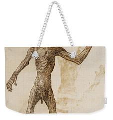 Monkey Standing, Anterior View Weekender Tote Bag by George Stubbs
