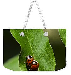 Nature - Love Bugs Weekender Tote Bag by Christina Rollo