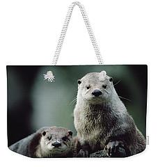 North American River Otter Lontra Weekender Tote Bag by Gerry Ellis