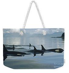 Orca Pod Johnstone Strait Canada Weekender Tote Bag by Flip Nicklin