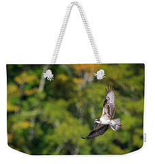 Osprey Weekender Tote Bag by Bill Wakeley