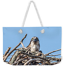 Osprey Eyes Weekender Tote Bag by Paul Freidlund