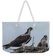 Osprey On A Nest Weekender Tote Bag by Paul Freidlund