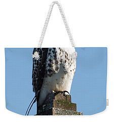Red Shoulder Hawk On A Post Weekender Tote Bag by Paul Freidlund