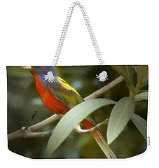 Painted Bunting Male Weekender Tote Bag by Phill Doherty