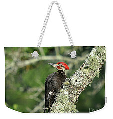 Pileated Perch Weekender Tote Bag by Al Powell Photography USA