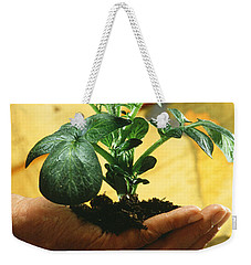 Potato Plant Weekender Tote Bag by Science Source