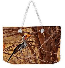 Prickly Perch 2 Weekender Tote Bag by Stacie Gary