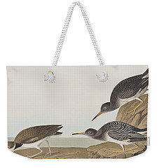 Purple Sandpiper Weekender Tote Bag by John James Audubon