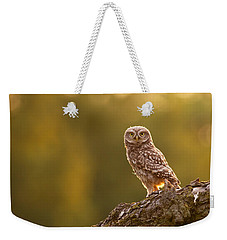 Qui, Moi? Little Owlet In Warm Light Weekender Tote Bag by Roeselien Raimond