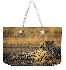 Reclining Cheetah Weekender Tote Bag by Inge Johnsson
