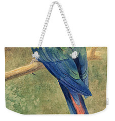Red And Blue Macaw Weekender Tote Bag by Henry Stacey Marks