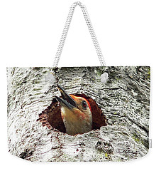 Red-bellied Woodpecker 03 Weekender Tote Bag by Al Powell Photography USA