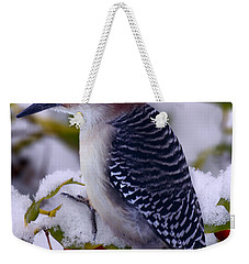 Red Bellied Woodpecker Weekender Tote Bag by Ron Jones
