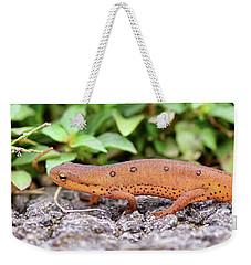 Red Eft - Close Up Weekender Tote Bag by Kerri Farley