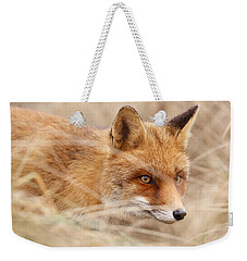 Red Fox On The Hunt Weekender Tote Bag by Roeselien Raimond