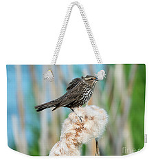 Ruffled Feathers Weekender Tote Bag by Mike Dawson