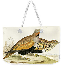 Sand Grouse Weekender Tote Bag by English School