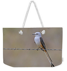 Scissor-tailed Flycatcher Weekender Tote Bag by Tony Beck