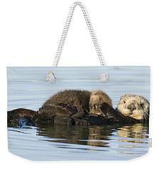 Sea Otter Mother And Pup Elkhorn Slough Weekender Tote Bag by Sebastian Kennerknecht