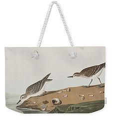 Semipalmated Sandpiper Weekender Tote Bag by John James Audubon
