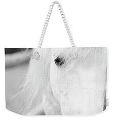 Shetland Pony Weekender Tote Bag by Tina Lee