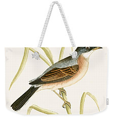 Spectacled Warbler Weekender Tote Bag by English School