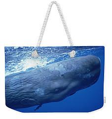 Sperm Whale Underwater Portrait Weekender Tote Bag by Flip Nicklin