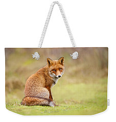 That Look - Red Fox Male Weekender Tote Bag by Roeselien Raimond