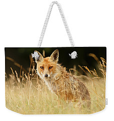 The Catcher In The Grass - Wild Red Fox Weekender Tote Bag by Roeselien Raimond