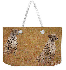 The Cheetahs Weekender Tote Bag by Stephen Smith