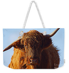 The Highland Cow Weekender Tote Bag by Stephen Smith
