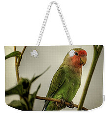 The Lovebird  Weekender Tote Bag by Saija  Lehtonen