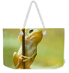The Pole Dancer - Climbing Tree Frog  Weekender Tote Bag by Roeselien Raimond