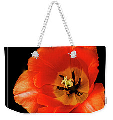 Tulip Macro Weekender Tote Bag by Kenneth Clinton