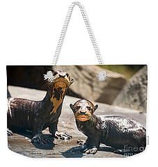 Twins Weekender Tote Bag by Jamie Pham