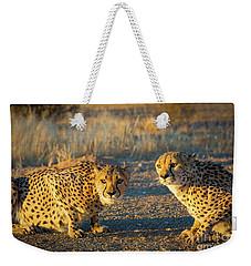 Two Cheetahs Weekender Tote Bag by Inge Johnsson