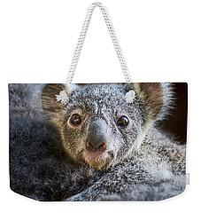 Up Close Koala Joey Weekender Tote Bag by Jamie Pham