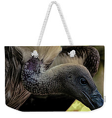 Vulture Weekender Tote Bag by Martin Newman