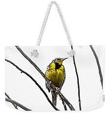 Western Meadowlark Weekender Tote Bag by Amy Sorvillo