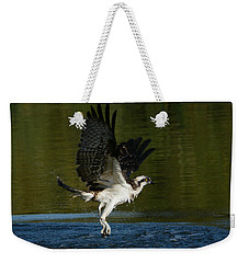 Wet And Wild 3 Weekender Tote Bag by Fraida Gutovich
