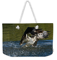 Wet And Wild 4 Weekender Tote Bag by Fraida Gutovich