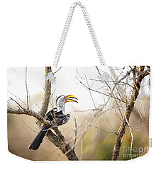 Yellow-billed Hornbill Sitting In A Tree.  Weekender Tote Bag by Jane Rix