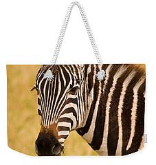 Zebra Weekender Tote Bag by Adam Romanowicz
