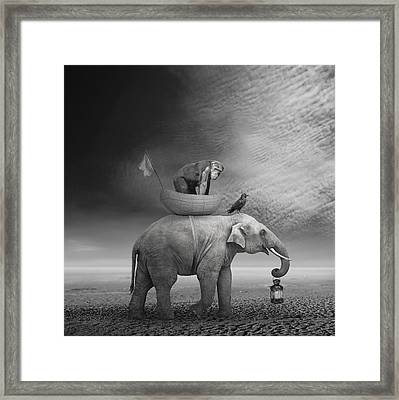 ... .. Framed Print by Beata Bieniak