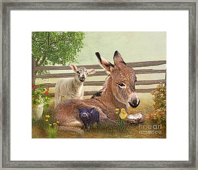 A Little Rest Framed Print by Trudi Simmonds