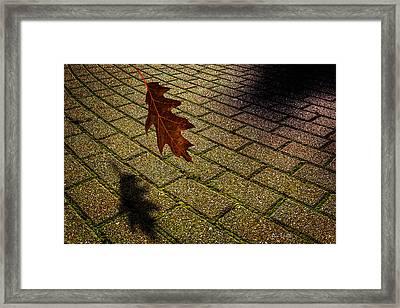 Autumnal Equinox Framed Print by Bob Orsillo