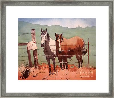 Bestfriends.jpg Framed Print by Cj Sky